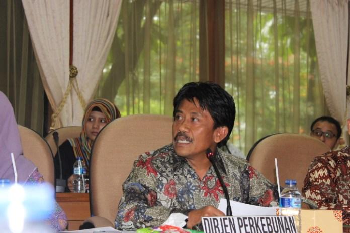 Direktur Jenderal Perkebunan Kementerian Pertanian Bambang/Foto Andika /NUSANTARAnews