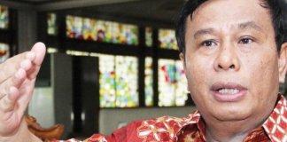 Wakil Ketua Umum DPP Hanura Nurdin Tampubolon. Foto ISt