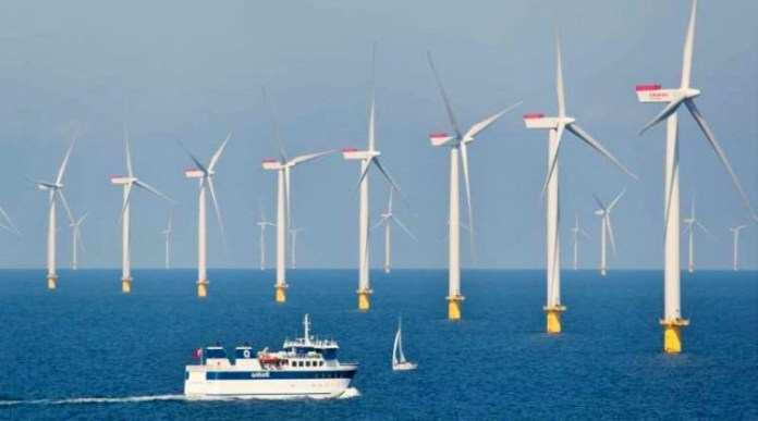 Energy windfarm Denmark/Ilustrasi Foto: Thewildeast.net
