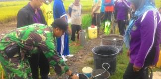 Jajaran TNI, Petani bersama PPL/Foto Nurcholis/Nusantaranews