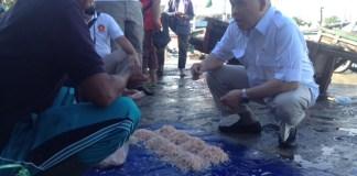 Anggota Komisi XI DPR RI dari Fraksi Gerindra, Heri Gunawan, saat berbincang dengan salah satu nelayan di Dermaga Palabuan Ratu, Sukabumi, Jawa Barat/Foto Dok. Pribadi/Nusantaranews