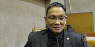 Wakil Ketua Komisi VI DPR RI, Inas N Zubir. Foto: Dok. Humas DPR