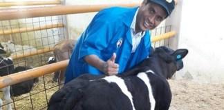Mentan Andi Amran Sulaiman bersama sapi Belgian Blue. Foto: Dok. Humas Kementan