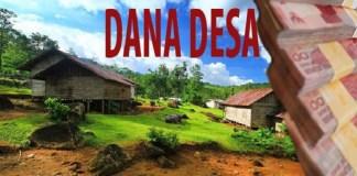 Dana Desa/Foto: Ilustrasi/Istimewa/Nusantaranews