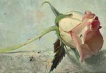 Bunga Layu (Ilustrasi). Gambar: Dok. webneel.com