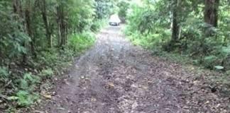 Kerusakan jalan ruas Sasara-Rea-Rea dan Rea-Rea Huluk, Kecamatan Bontoharu, Kabupaten Kepulauan Selayar, Sulawesi Selatan. Foto: Fadly Syarif/NusantaraNews
