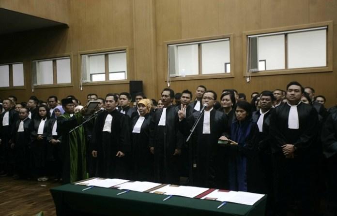 Peradi Advokat