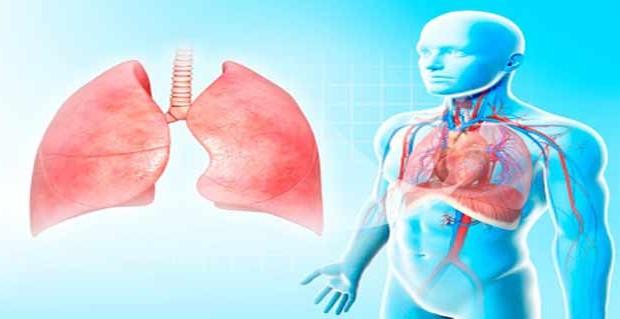 शहद और पानी के लीवर के लिए नुस्खे | Shahad aur paani ke liver ke liye nuskhe | Health benefits of honey and water for liver