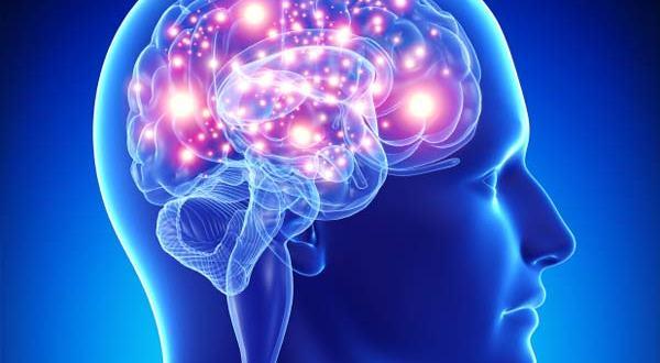 जानिये आयुर्वेद के द्वारा मस्तिष्क की शक्ति बढ़ाने के नुस्खे , Increase brain strength with help of Ayurvedic treatment , Top 10 Ways to Improve Your Brain Power while using Ayurvedic treatment