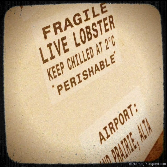 Cases of fresh lobster from the east coast of Canada.