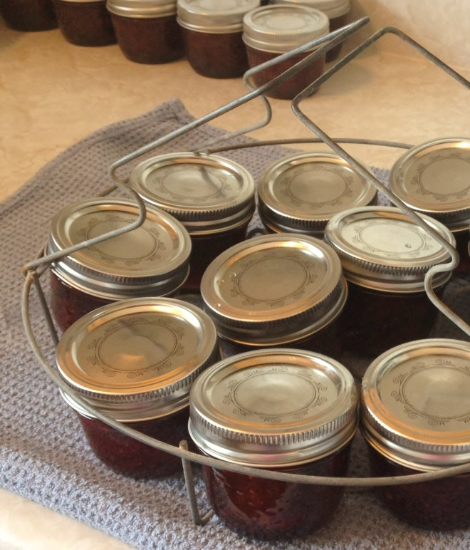 Canning jars ready to be processed on Nutmeg DIsrupted
