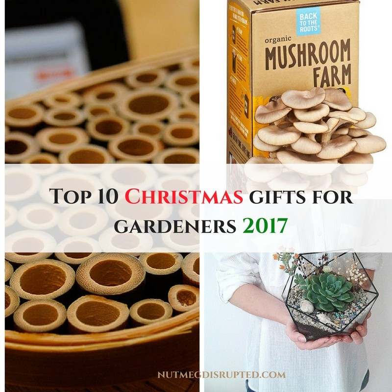 The Top 10 Christmas Gifts for the gardener on your list on Nutmeg Disrupted