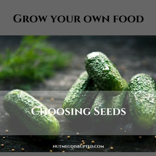 Grow Your Own Food CHoosing Seeds on Nutmeg Disrupted