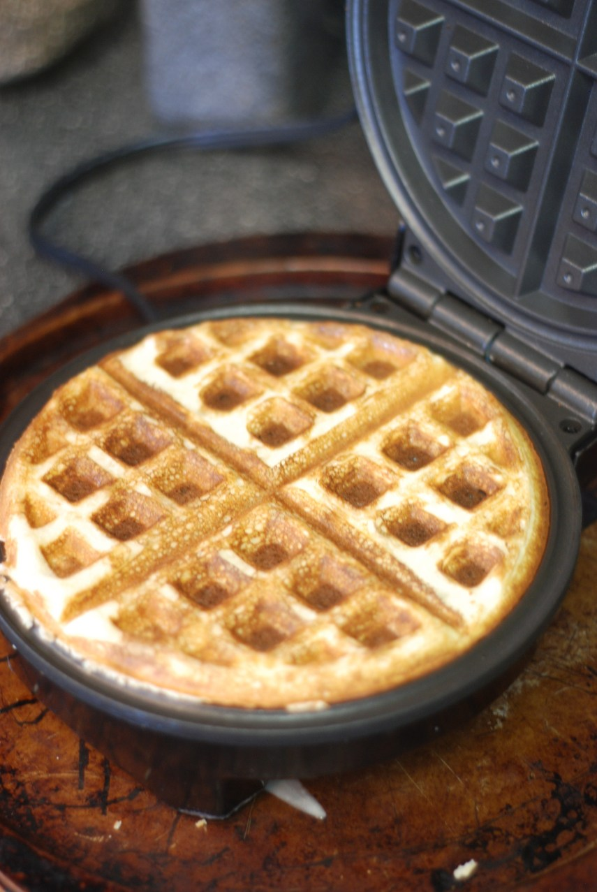 Coconut Flour Keto Waffles from the Nutmeg Disrupted kitchen