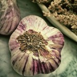 Grow Your Own Food – How to Grow Garlic