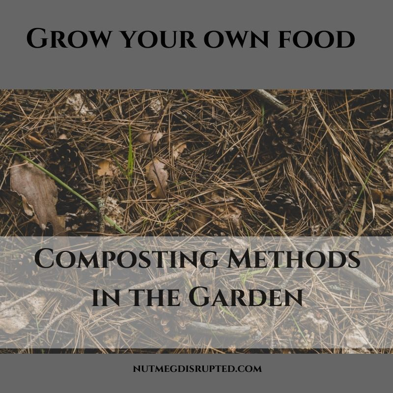 Grow Your Own Food COmposting Methods in The Garden from Canadian Garden blog Nutmeg Disrutpted