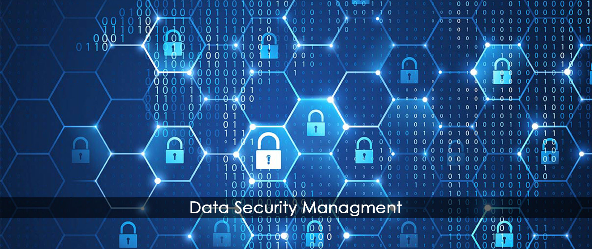 Data Security | Cyber Security