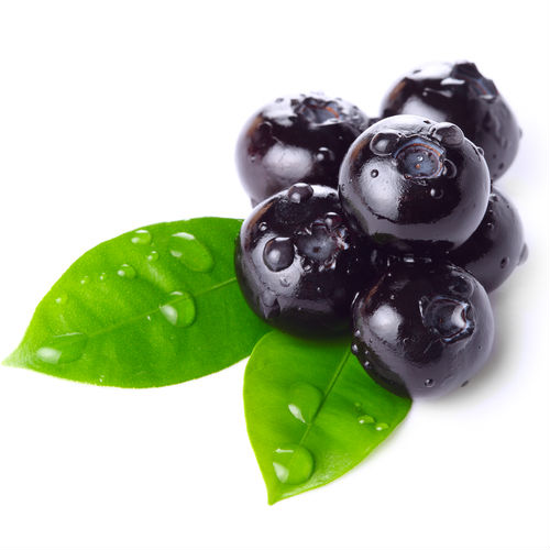 Image result for blueberry leaf extract