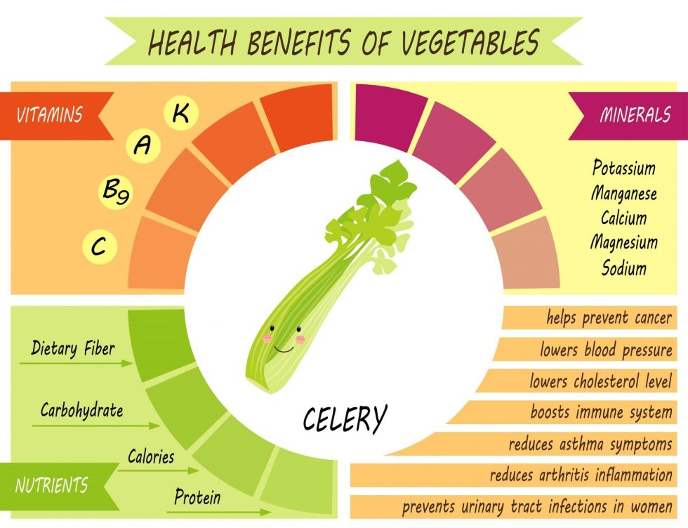 Celery Benefits infographic