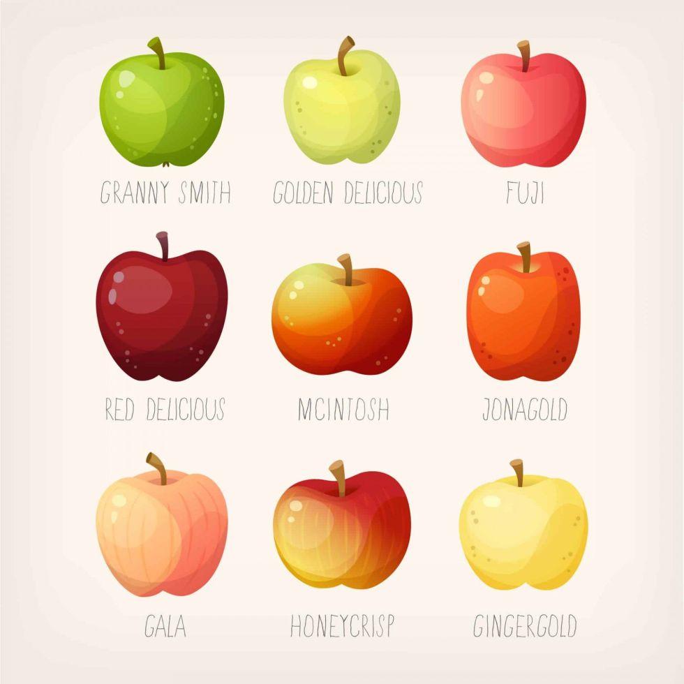 List of Apples