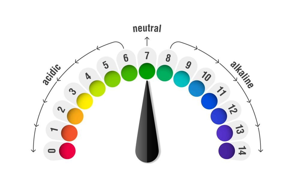 pH value scale meter for acid and alkaline solutions infographic