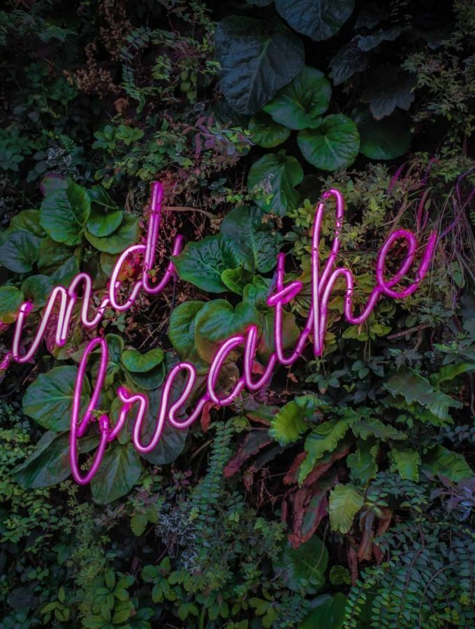 """image of a pink neon sign with words: """"and breathe"""" against a garden background"""