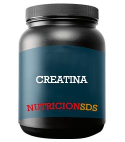 creatina-nutricionsds