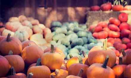 抗發炎飲食:營養素們如何促進或抗發炎呢?