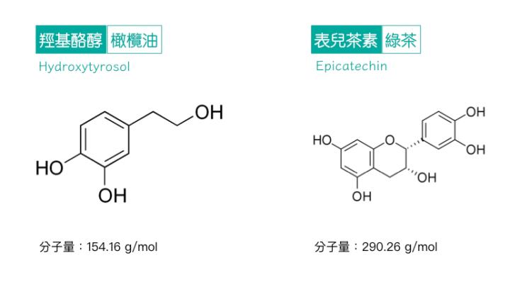 植物多酚-分子大小-抗氧化力