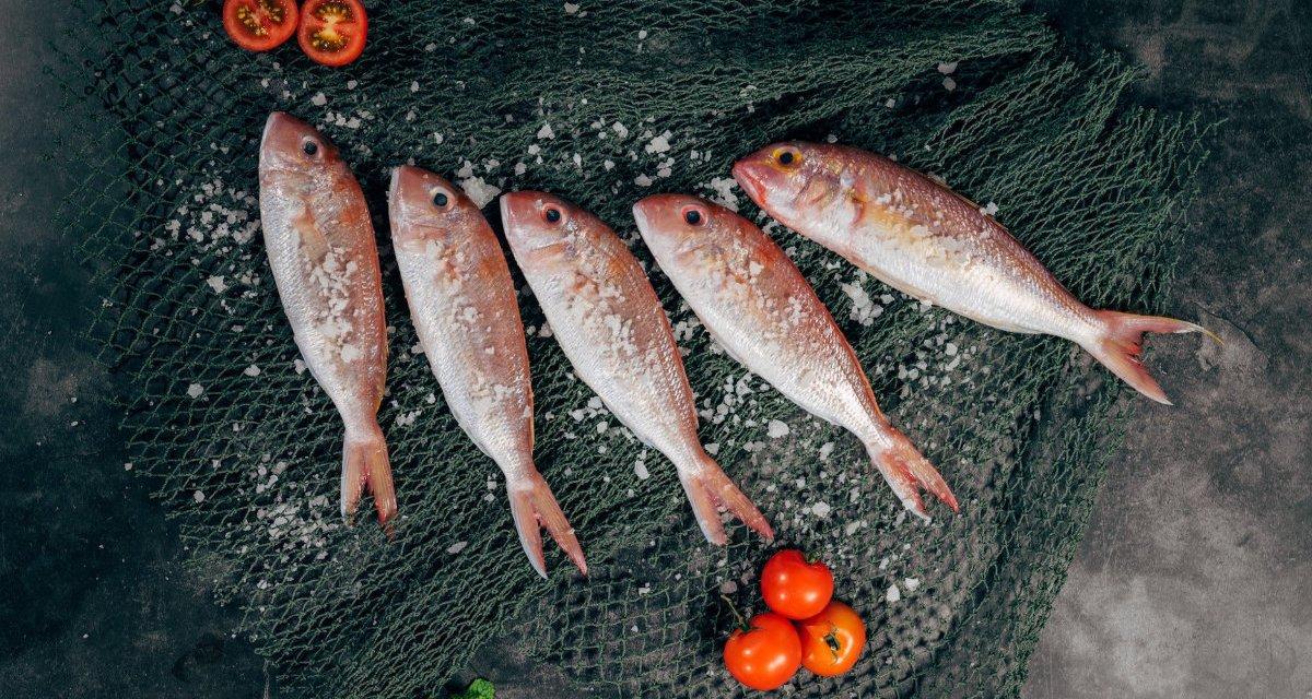 每天多吃魚 100 公克 幫你遠離慢性病?