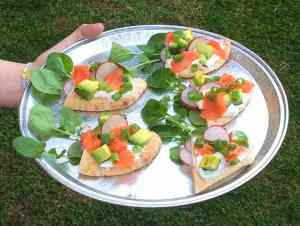 'Avo Salmon and Cheese Boats' on Toufayan Pita