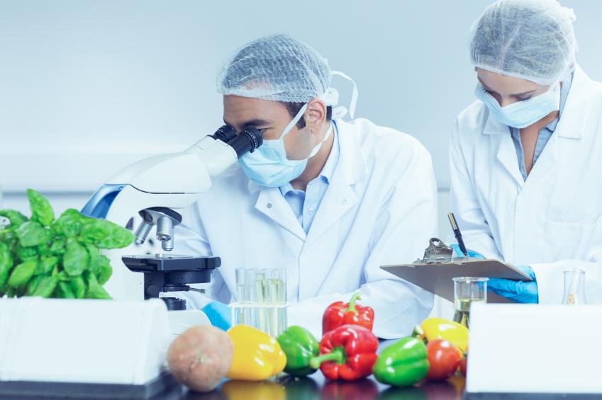 Mata kuliah pengantar sebelum mempelajari teknologi pengolahan pangan, prinsip teknik pangan, dan prinsip dasar rekayasa proses pangan. Kuliah Di Jurusan Teknologi Pangan Nutrisipangan