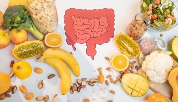 consulenza benessere intestinale