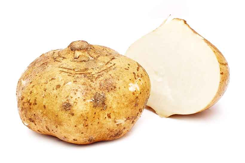 Picture of the Mexican Yam Bean (Jicama) Vegetable.