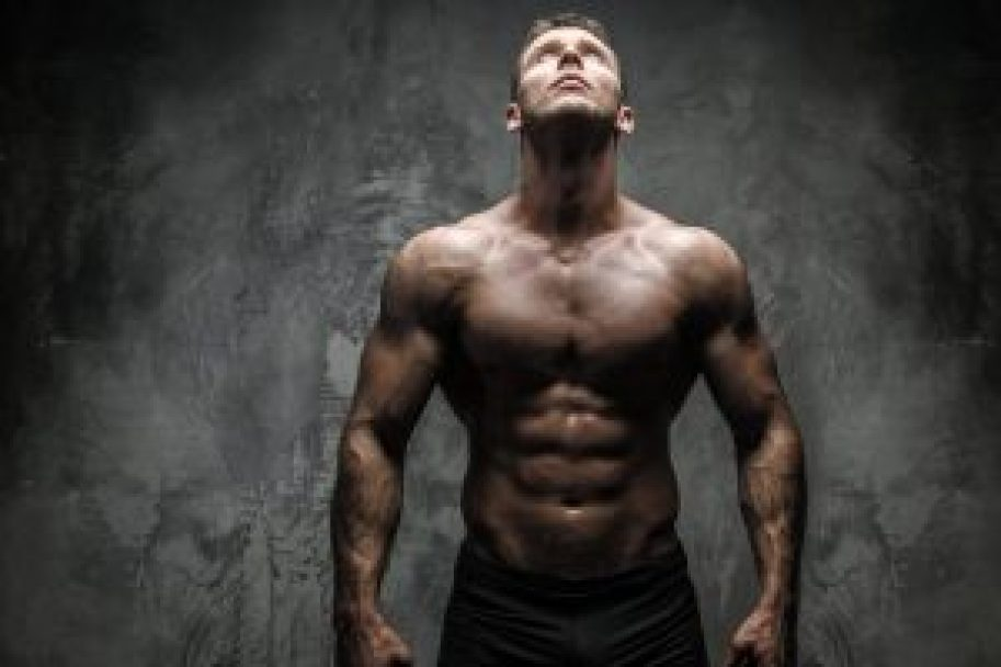 Beginner Workout Plan For Building Muscle