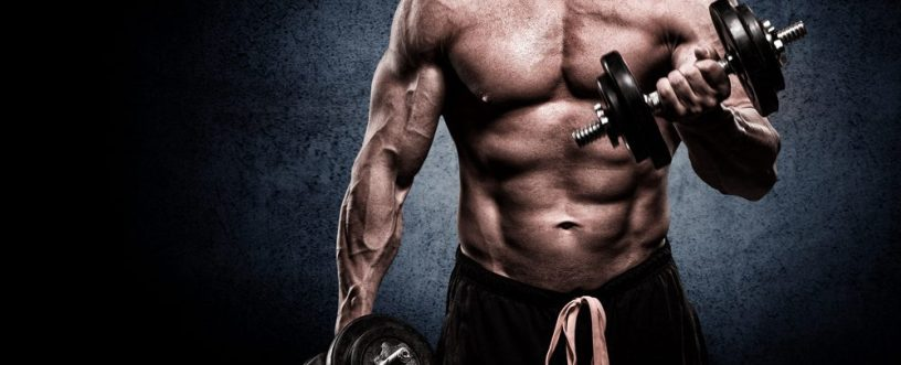 bulking program for beginners