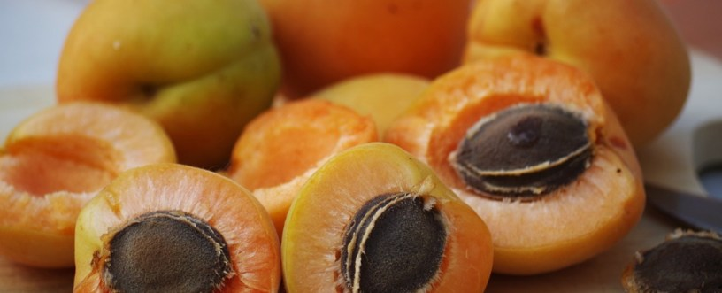 Apricots Explained: Nutrients, Health Benefits & How To Prepare