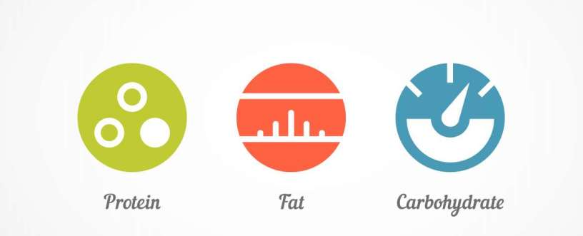 How To Calculate Your Ideal Macronutrient Intakes For Weight Loss (Protein, Fat & Carbs)