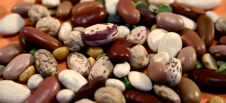 Beans Explained: Nutrients, Health Benefits & How To Prepare