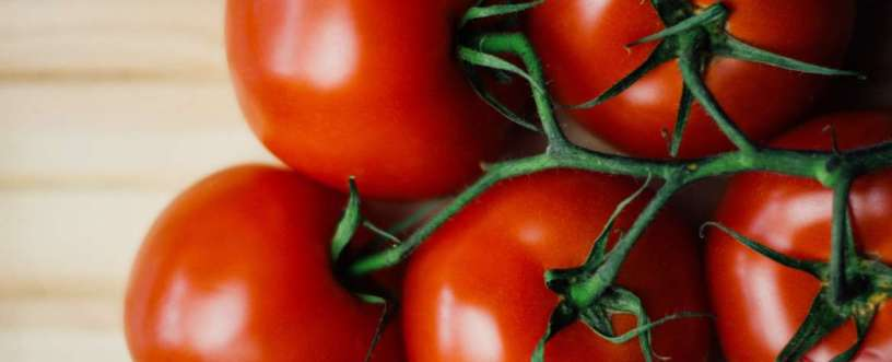 Tomatoes Explained: Nutrients, Health Benefits & How To Prepare