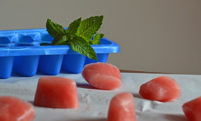 watermelon lime ice cubes with mint