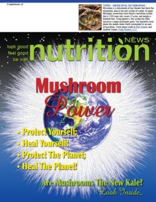 Mushroom Power cover
