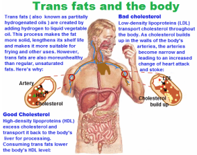 trans-fats-and-the-body