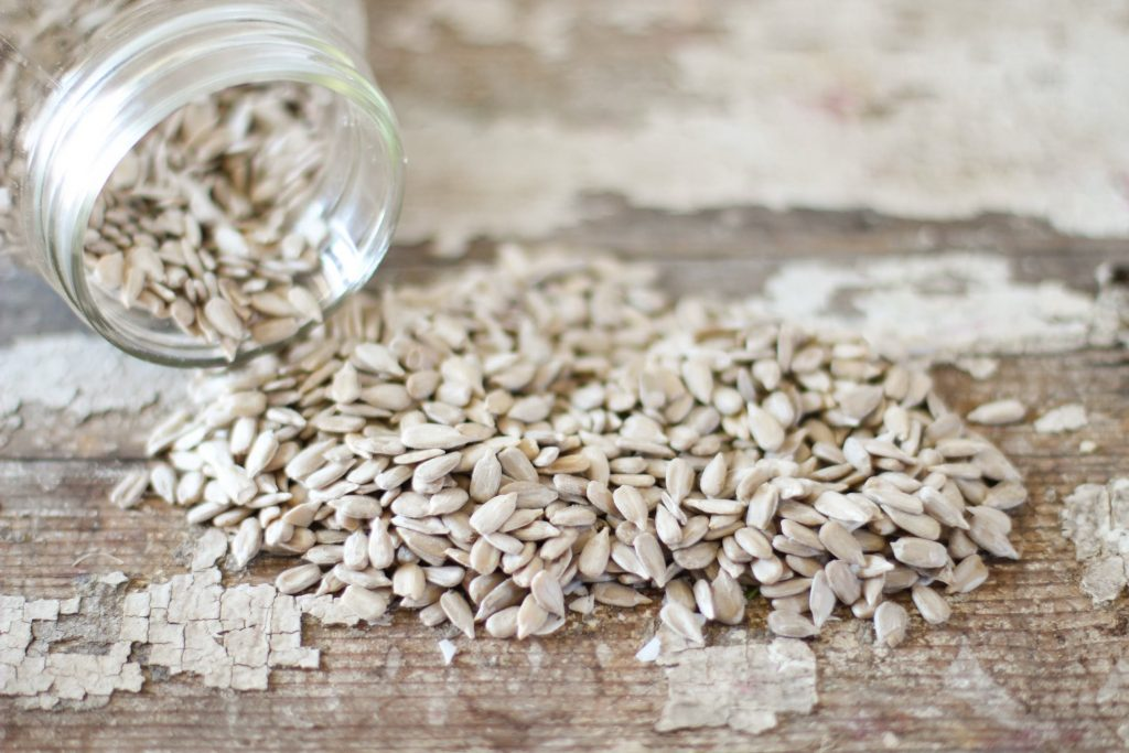 10 Plant-Based Proteins You Should Be Eating