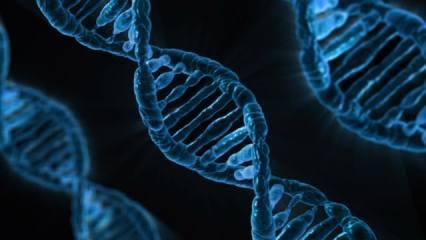 Representation of DNA