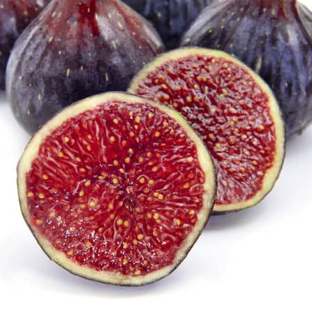 Selection of Figs