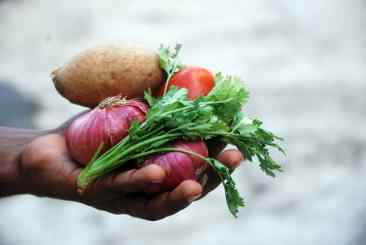 Vegetables in a hand