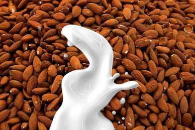 Almond milk concept
