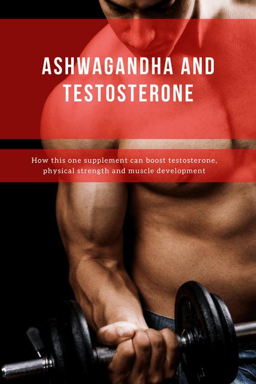 Ashwagandha and Testosterone