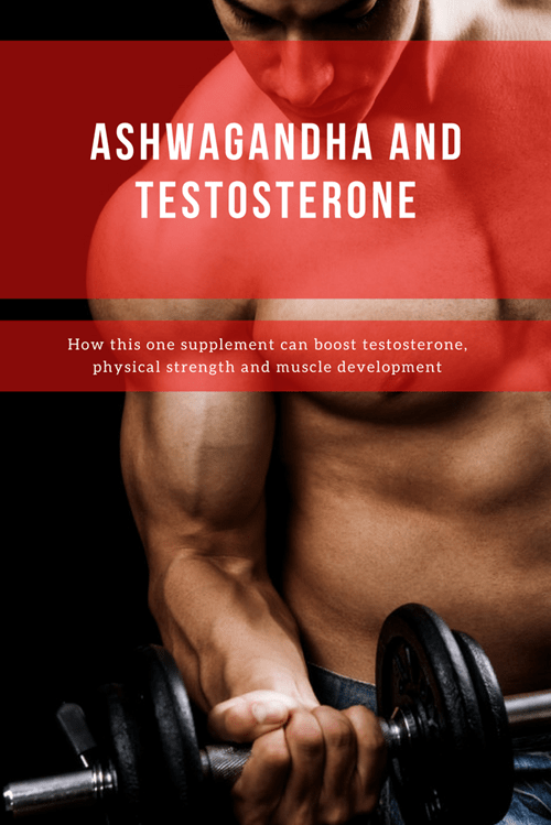 Ashwagandha and Testosterone